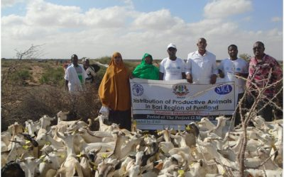 Awareness creation amongst vulnerable herds on Restocking / redistribution of productive animals, collection/selection of productive female goats; January 2016- March 2016